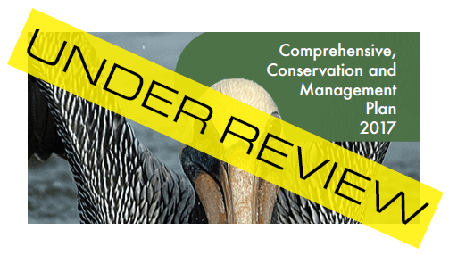 Image: 2017 CCMP Under Review