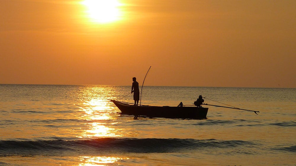 Image: Fishing at Sunset